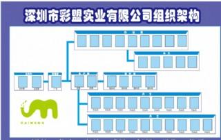 企业组织架构