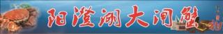 陽澄湖大閘蟹