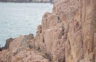 大陈岛 石头 海景
