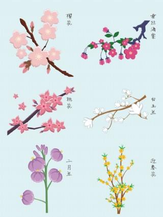 各种春天花卉